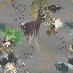 modern feather wallpaper