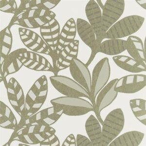 bold leaf